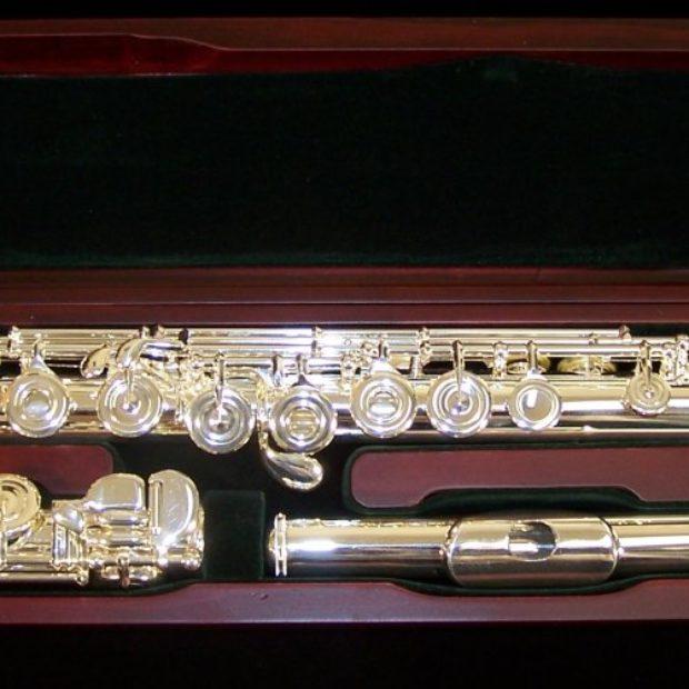 Flauto Pearl 795 RB Elegante